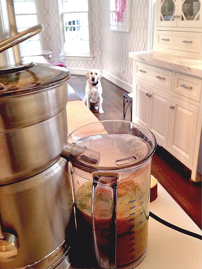 Breville Juicer recipe