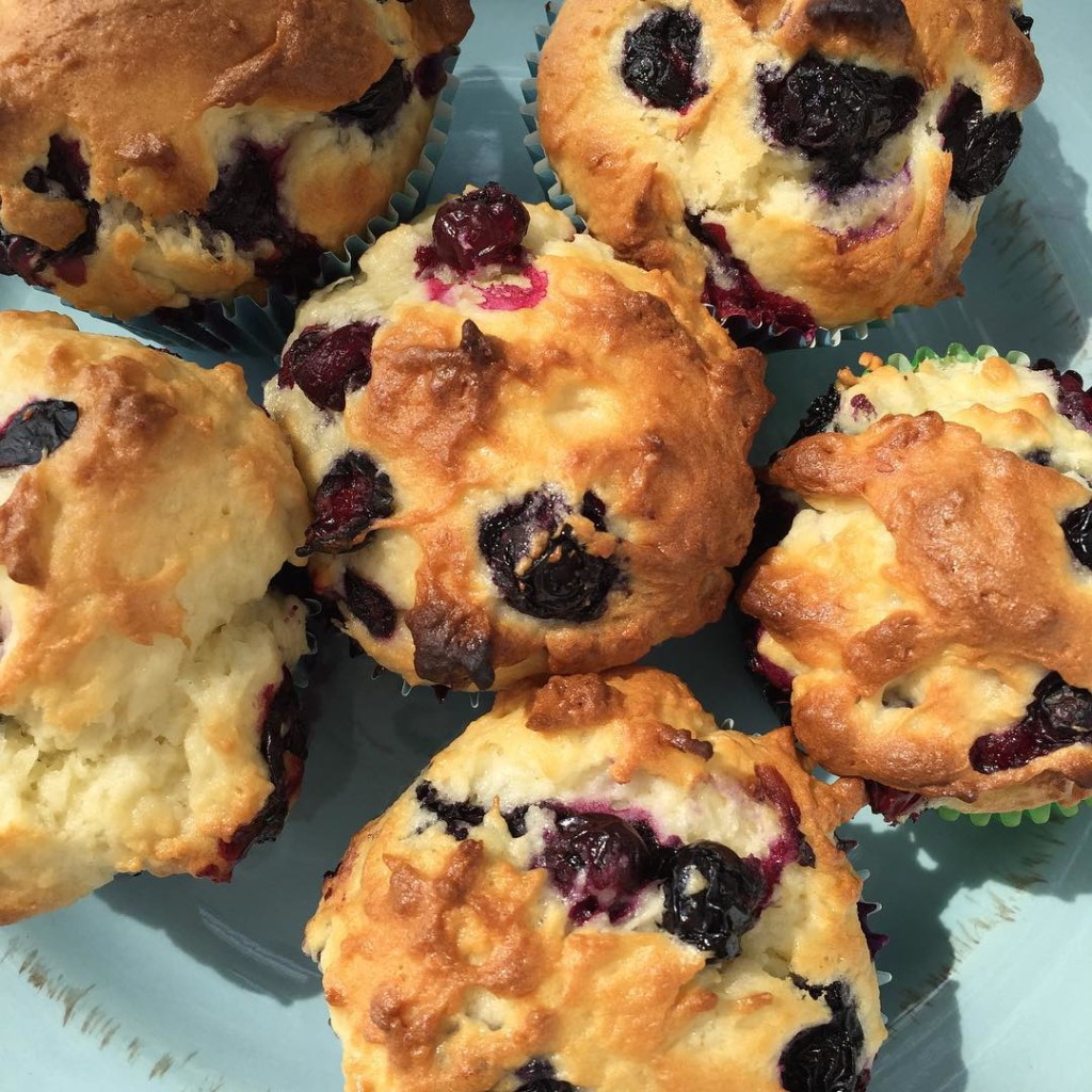 Perfect Gluten Free Blueberry Muffin