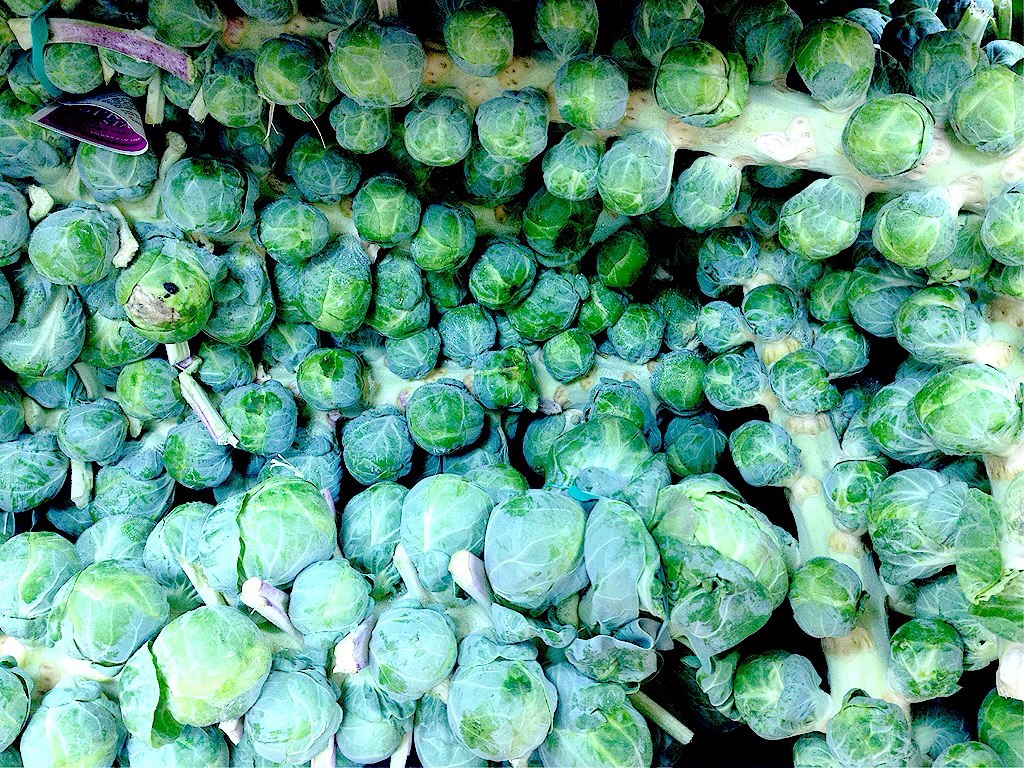 I can't believe I love Brussel Sprouts