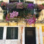 Flower Boxes in Venice