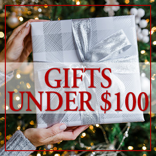 Gifts under $100 - Holiday Gift Guide