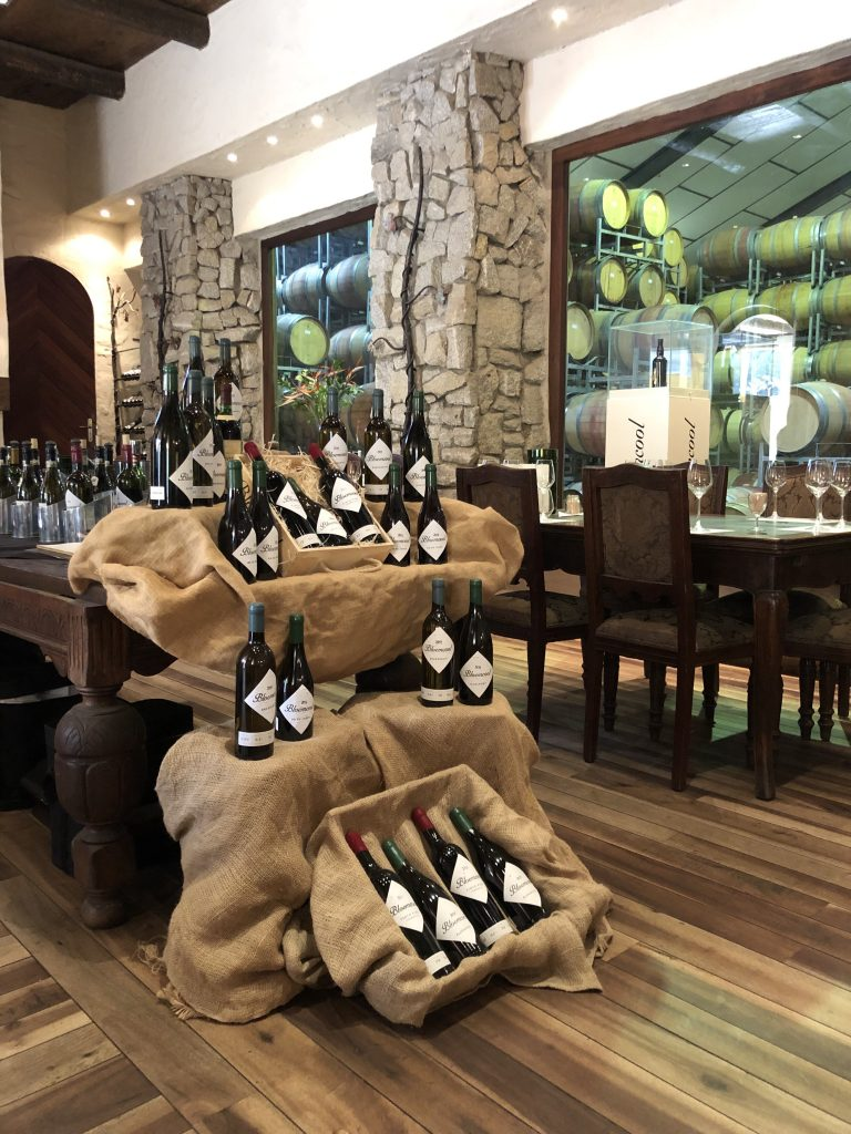 Fairview Winery Paarl South Africa, Master Tasting at Fairview Winery