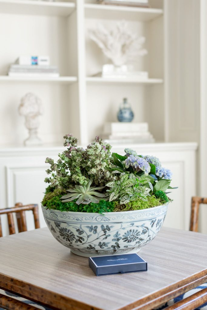 Indoor Container Garden, Alicia Wood Lifestyle