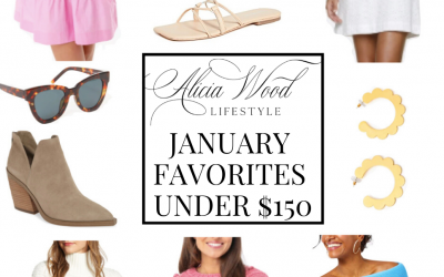 January Favorites Under $150